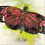 Red Monarch Butterfly Wrapped Canvas Giclee Print Wall Art