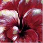 Red Pansy Flower Detail Wrapped Canvas Giclee Print Wall Art