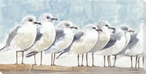 Resting Seagull Birds Wrapped Canvas Giclee Print Wall Art