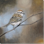 Resting Sparrow Bird I Wrapped Canvas Giclee Print Wall Art