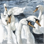 Resting Swan Birds Wrapped Canvas Giclee Print Wall Art