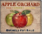 Roadside Apples Wrapped Canvas Giclee Print Wall Art