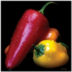 Robinson's Peppers Ceramic Trivets, Set of 2