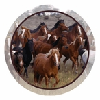 Running Horses Collage Beverage Coasters by Ron Kimball, Set of 12