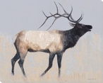 Rustic Elk Wrapped Canvas Giclee Print Wall Art
