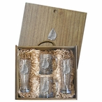 Sailboat Pilsner Glasses & Beer Mugs Box Set with Pewter Accents