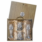 Sand Dollar Pilsner Glasses & Beer Mugs Box Set with Pewter Accents