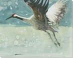 Sandhill Crane Bird Flying Wrapped Canvas Giclee Print Wall Art