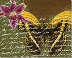 Scrolled Butterfly 4 Wrapped Canvas Giclee Print Wall Art