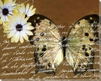 Scrolled Butterfly 6 Wrapped Canvas Giclee Print Wall Art