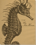 Sea Horse Etching Wrapped Canvas Giclee Print Wall Art