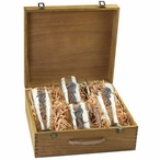 Seahorse Pilsner Glasses & Beer Mugs Box Set with Pewter Accents