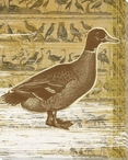 Second Duck Bird Wrapped Canvas Giclee Print Wall Art