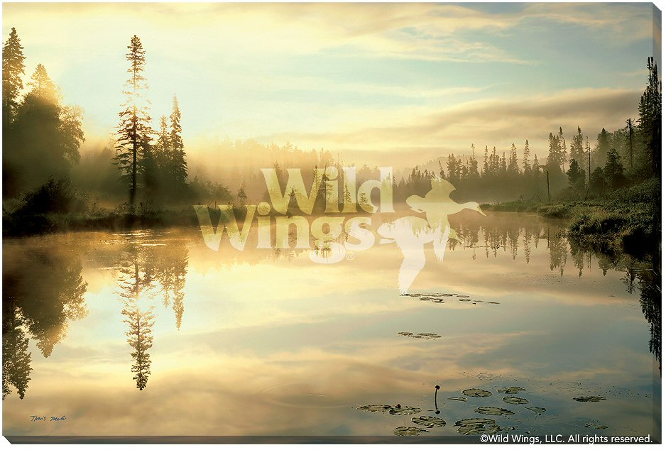 Serenity Scenic Landscape Wrapped Canvas Giclee Print Wall Art ...