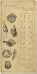 Seven Times Table with Sea Shells Wrapped Canvas Giclee Print Wall Art