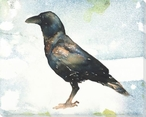 Side Crow Bird Wrapped Canvas Giclee Print Wall Art