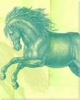 Silk Horse Wrapped Canvas Giclee Print Wall Art