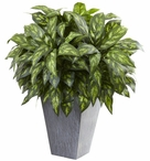 Silver King Silk Plant with Slate Planter