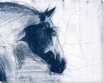 Sketched Horse Head Blue 1 Wrapped Canvas Giclee Art Print Wall Art