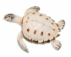 Small Beige Turtle Statues, Set of 2