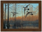 Small Early Morning Wood Ducks Framed Canvas Art Print Wall Art