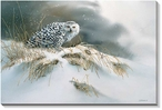 Snow Queen Snowy Owl Bird Wrapped Canvas Giclee Print Wall Art