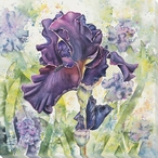 Solitaire Royale Flower III Wrapped Canvas Giclee Print Wall Art