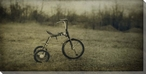 Sowen's Shot Tricycle Wrapped Canvas Giclee Print Wall Art