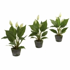 Spathiphyllum Silk Plant with Cement Planter, Set of 3