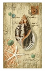 Spiral Sea Shell Vintage Style Metal Sign