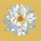 Spring Blossom Flower Yellow Wrapped Canvas Giclee Print Wall Art