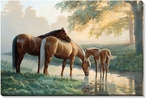 Spring Morning Horses Wrapped Canvas Giclee Print Wall Art