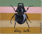 Stag Beetle Bug Wrapped Canvas Giclee Print Wall Art