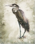 Standing Heron Bird Wrapped Canvas Giclee Print Wall Art