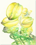Star Fruit Morning Wrapped Canvas Giclee Print Wall Art