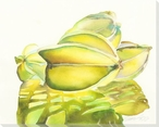 Star Fruit Wrapped Canvas Giclee Print Wall Art