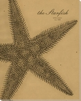 Starfish Etching Wrapped Canvas Giclee Print Wall Art
