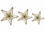 Starfish Vintage Style Cutout Metal Signs, Set of 3