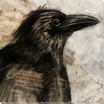 Stone Litho Crow Bird Wrapped Canvas Giclee Print Wall Art