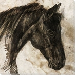 Stone-Litho Horse Wrapped Canvas Giclee Print Wall Art
