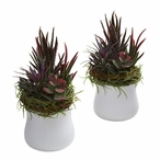 Succulent Silk Plant with White Planter, Set of 2