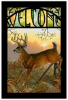 Sunrise Retreat Whitetail Deer Stained Glass Welcome Wall Art