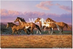 Sunset Cruise Wild Horses Wrapped Canvas Giclee Print Wall Art