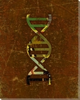 Symbolic DNA Wrapped Canvas Giclee Print Wall Art