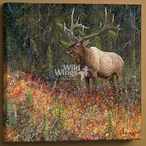 Tapestry Bull Elk Wrapped Canvas Giclee Print Wall Art