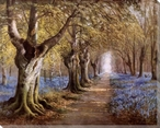 The Blue Bell Walk Wrapped Canvas Giclee Print Wall Art
