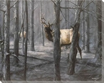 The Consequence of Fire Elk Wrapped Canvas Giclee Print Wall Art