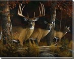 The Legend Deer Family Wrapped Canvas Giclee Print Wall Art