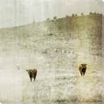 The Third is Fading Cows on the Farm Wrapped Canvas Giclee Print