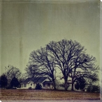 Three Oak Trees and a House Wrapped Canvas Giclee Print Wall Art